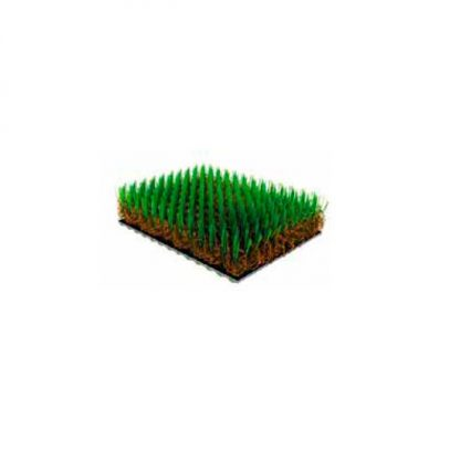 Compograss Paradise Plus